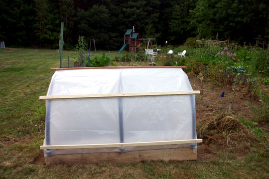 The finished hoop house, soon to be filled with hardy fall and winter plants.