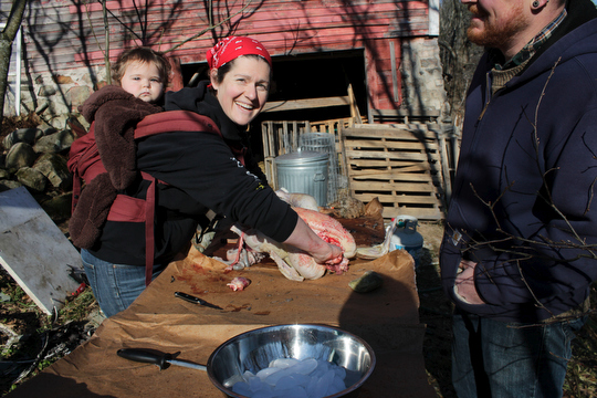 Margaret with Sadie processing turkeys in preparation for this year's Thanksgiving feast