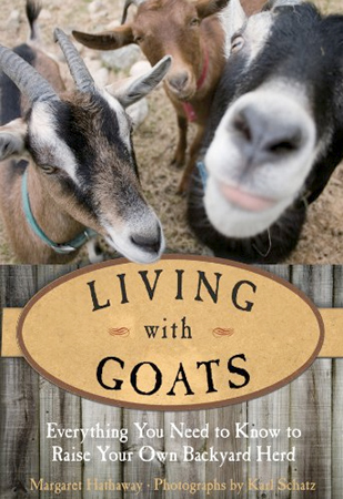 The paperback version of Living With Goats features a new cover with Ten Apple goats Flyrod, Chansonetta, and Joshua