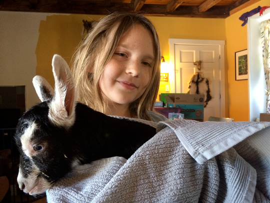 Charlotte shows off Toka's doeling, born Sunday
