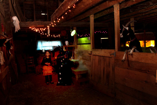A witch (Beatrice) stirs her cauldron while horned beasts watch inside the Ten Apple Farm haunted barn