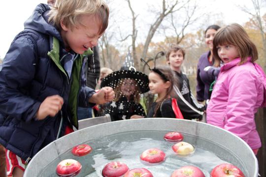 Bobbing for apples